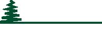 Logo Brizzi bianco